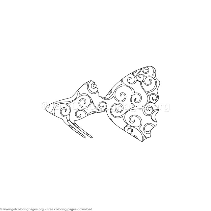 2 Spiral Pattern Beta Fish Coloring Pages