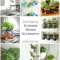 Indoor Herb Garden Ideas Photos Small Kitchen Design For Mobile Hd Creative Juice Diy