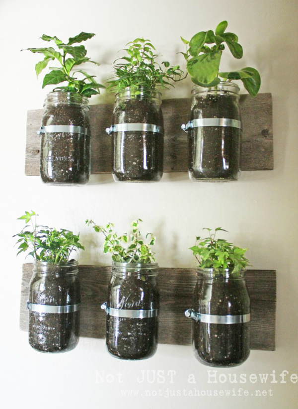 Indoor Herb Garden Ideas Creative Juice