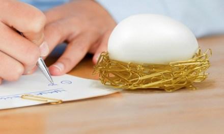 Desk Egg – Cozy Nest for Paper Clips