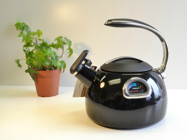 Cuisinart PerfecTemp Teakettle