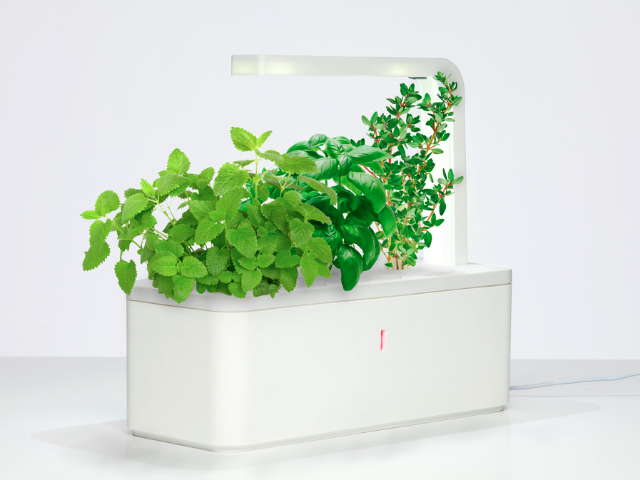 Click Grow Smart Herb Garden Indoor Gardening Made Easy Getdatgadget