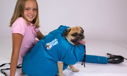 Puff-N-Fluff Dog Dryer Revolutionizes Dog Drying