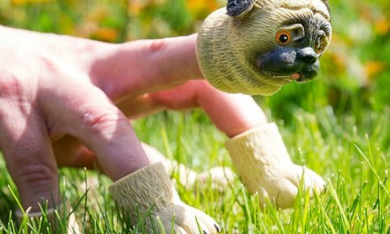 Handipug Turns Your Hand into a Pet Dog