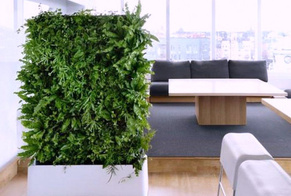 Indoor Vertical Planter Greens Up your Walls