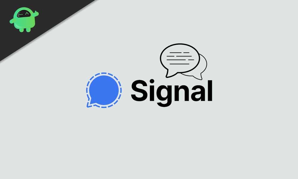 Хранит ли Signal данные пользователя?