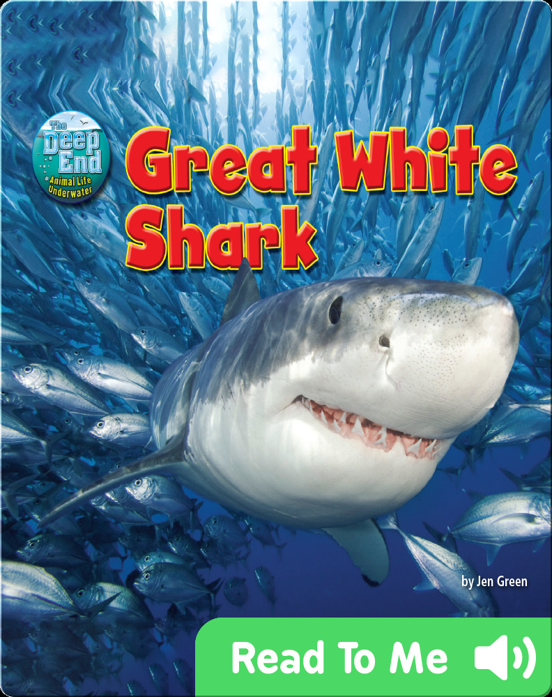 Nonfiction books for 1st graders: Great White Shark