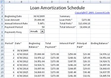 Beautiful Amortization Schedule Excel