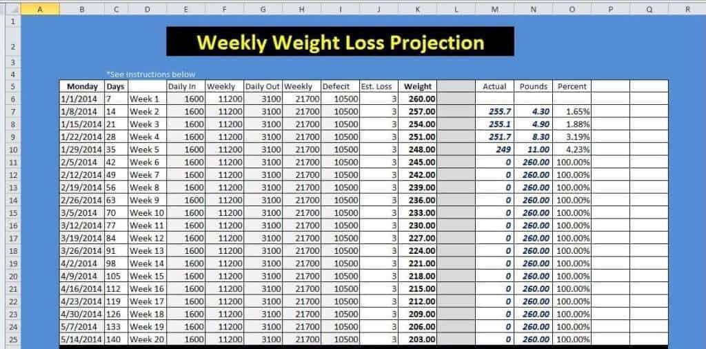 weight loss sheet