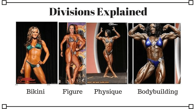 Divisions Explained (1)