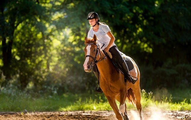 horse ridding: new year resolution