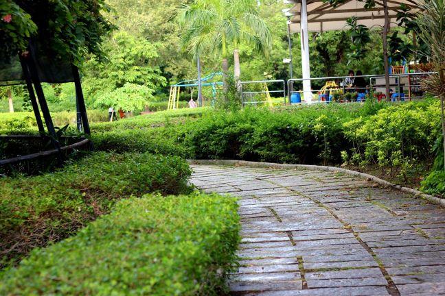 semmozhi poonga running tracks in chennai