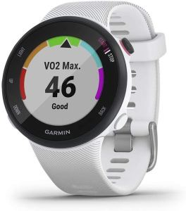 Garmin Forerunner 45S Running Watch