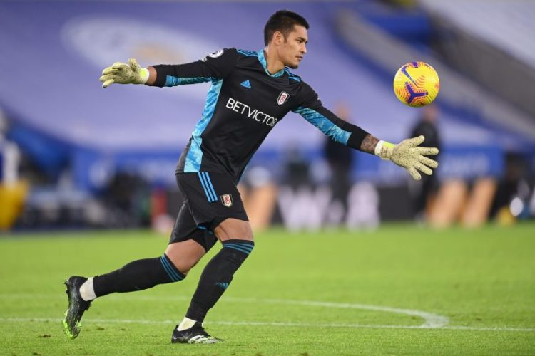 """Alphonse Areola on moving to Fulham: """"It was a more difficult choice to  make.""""   Get French Football News"""