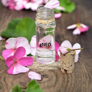 Egypt Geranium Essential Oil