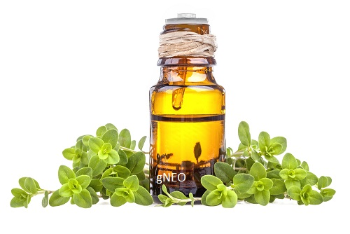 Wild Marjoram Essential Oil