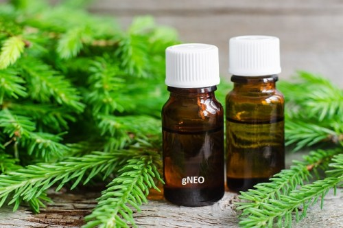 Fir needle essential oil