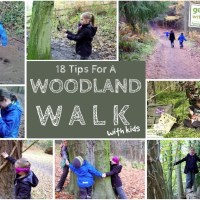18 Tips for a Woodland Walk with Kids