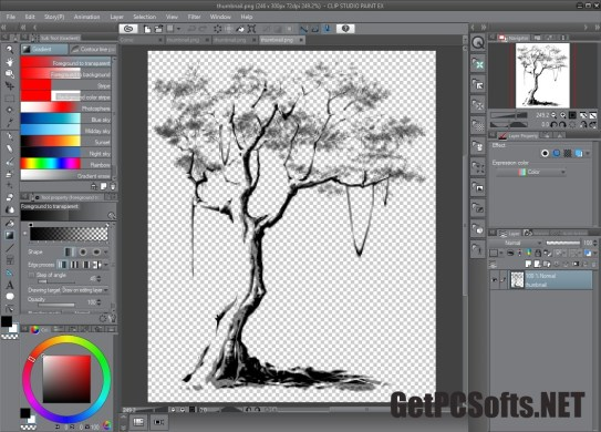 clip studio paint ex crack download