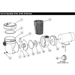 Swimming Pool Pump Replacement Parts