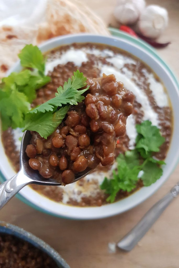 Lentil Curry closeup in spoon