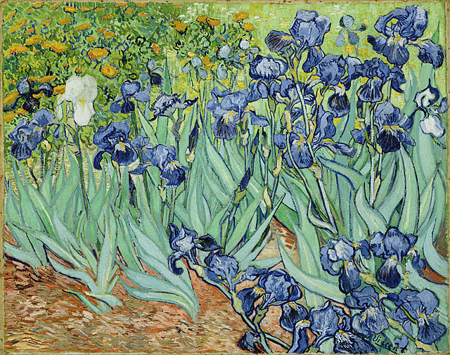 Irises Vincent van Gogh 1889 Getty Center Los Angeles California