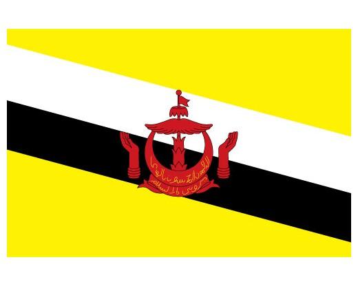 Image result for brunei flag