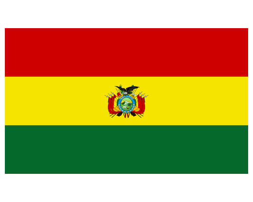 Bolivia Flag Bolivia Flags South America Flags Country Flags From