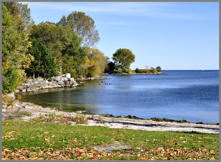 Etobicoke park