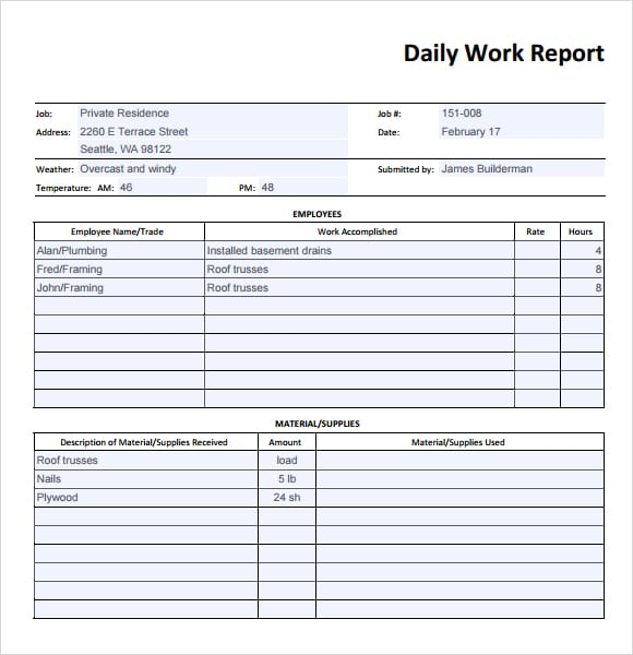 10 daily report templates word excel pdf formats for Basic html table template