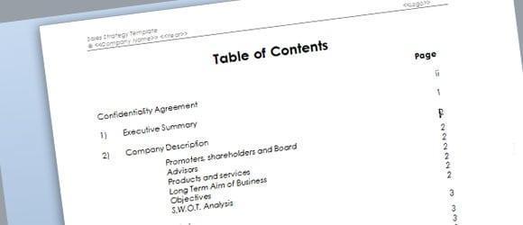 9+ Sales plan templates - Word Excel PDF Formats