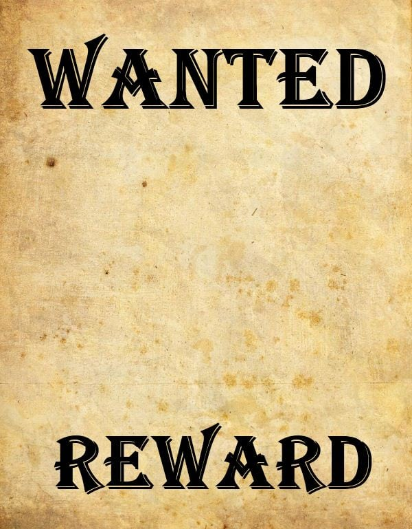 Charming Wanted Poster Template Editable