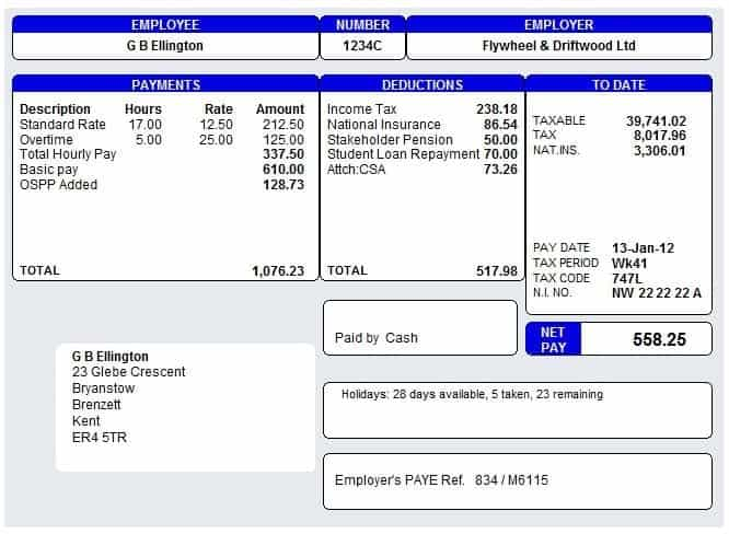 Payslip Template 4  Fake Payslip Template