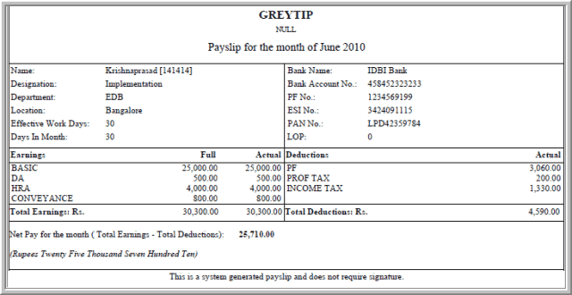 Payslip Template 9  Monthly Pay Slip