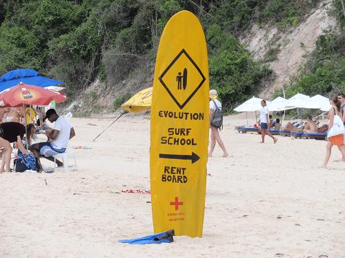 surf n study2