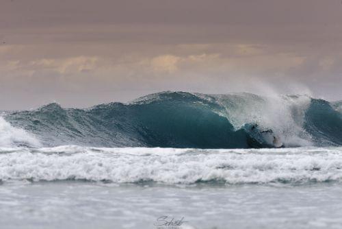 פרו נתניה גלישת גלים