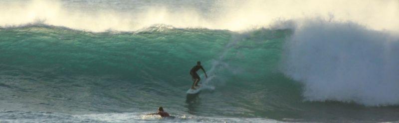 גלישת גלים בהוואי