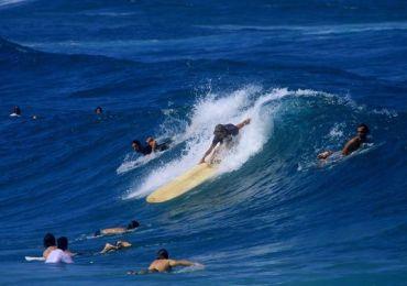 blues surfer