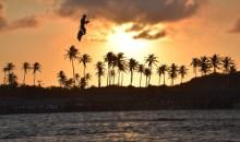 קרנבל ברזילאי: טיול גלישת קייטסרפינג – מדריך קצר ולעניין