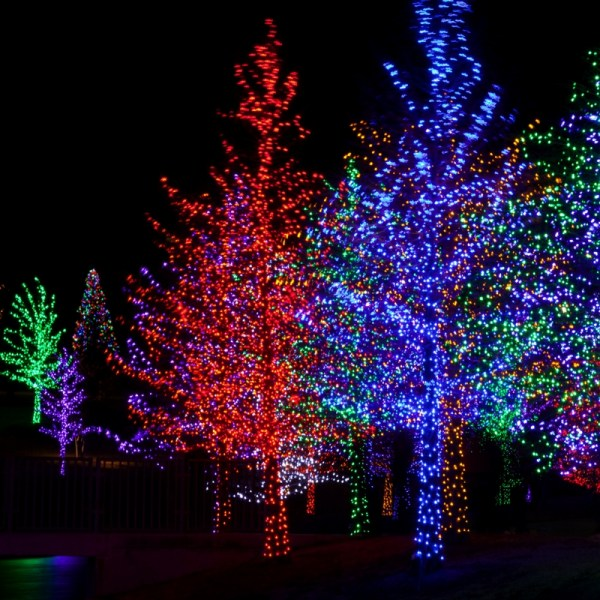 Magic of Lights Review | A Heart Warming Experience