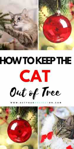 how to keep kitty out of tree hacks! #kitty #cats #diycats #Christmastree