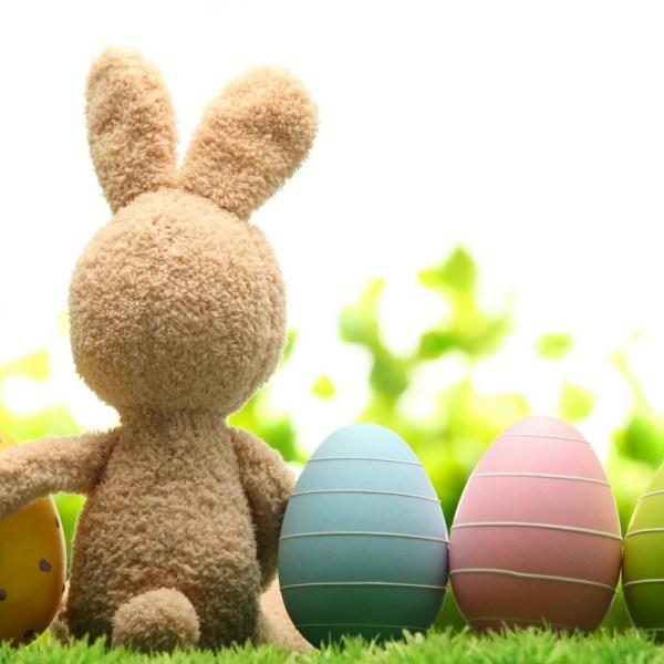 Easter Bunny April Fools
