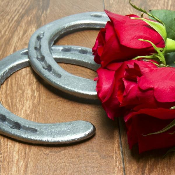 Kentucky Derby Hashtags #Kentuckyderby #derby #roses #kentucky