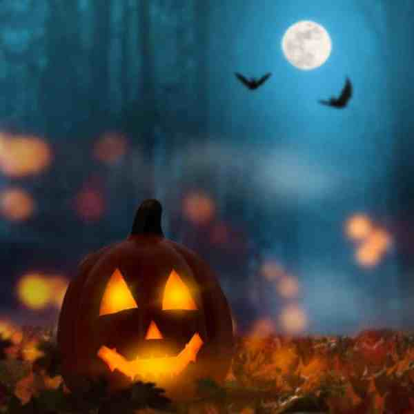 Best of the Best Halloween Games for Adults!