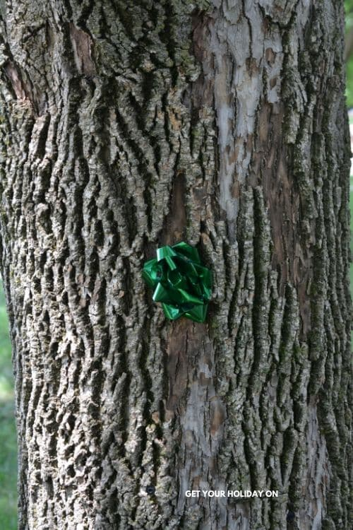 gift bows hidden in the backyard for my kids to find them.
