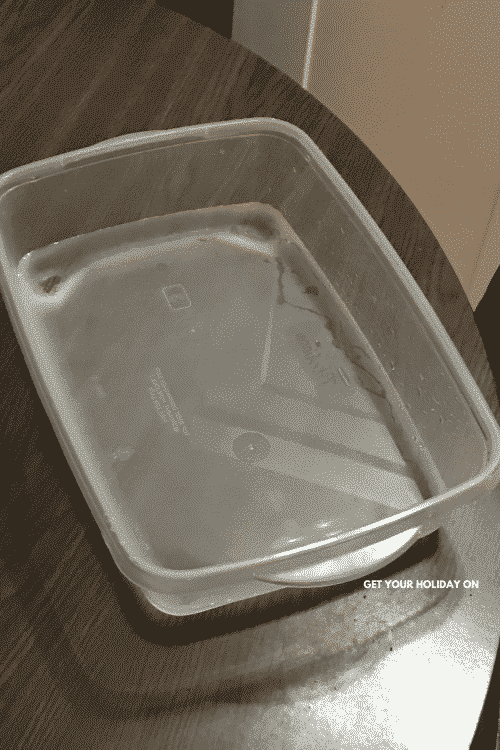empty plastic container.