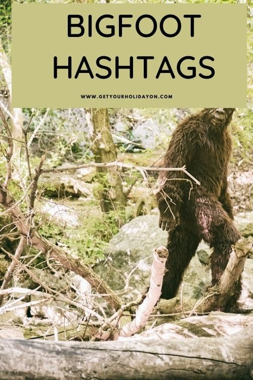 Bigfoot hashtags for finding Bigfoot and the Sasquatch himself.