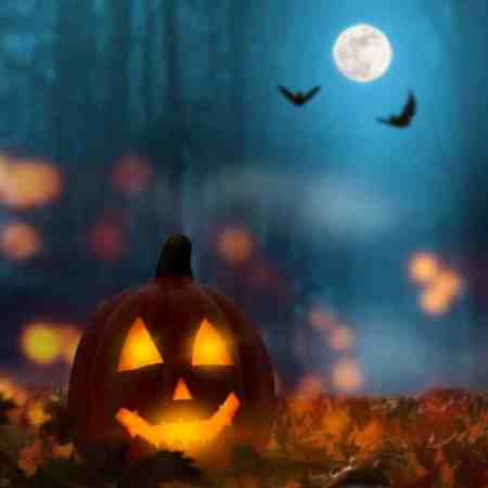 animated halloween decor ideas for indoor our outdoor decor