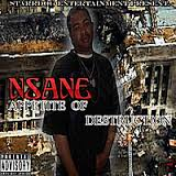 NSANE- Appetite of Destruction