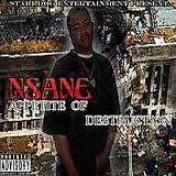 NSANE- Appetite of Destruction
